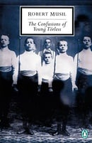 The Confusions of Young Torless (Penguin 20th Century Classics)