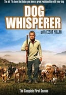 Dog Whisperer With Cesar Millan: Comp First Season   [Region 1] [US Import] [NTSC]