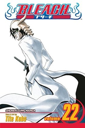 Bleach, Volume 22