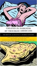 Created in Darkness by Troubled Americans: The Best of McSweeney
