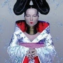 Bjork: Homogenic - Surrounded