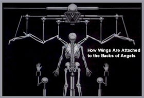 How Wings Are Attached to the Backs of Angels