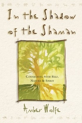 In the Shadow of the Shaman: Connecting with Self, Nature, & Spirit